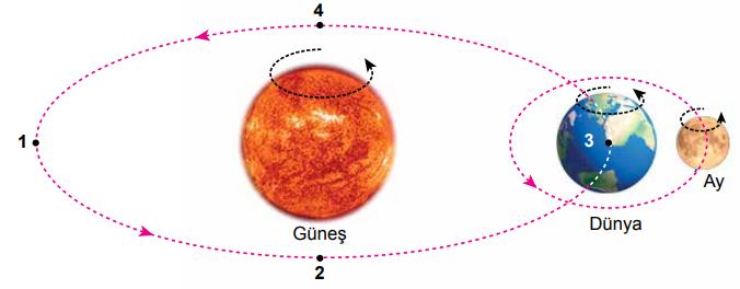 5. Sınıf Fen Bilimleri Güneş, Dünya ve Ay - Sayfa 5 / 5 Testi Çöz ...